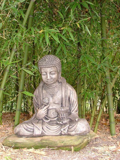 buddhavirids